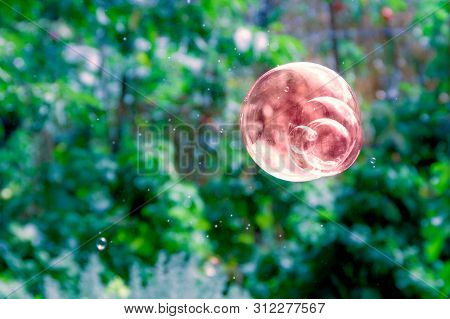 Abstract View Of One Brown Soap Bubble On Blurred Green Background. Use For Background.