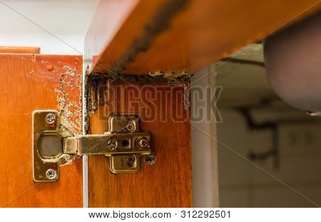 Traces Of Termites Eat Wood, Timber Beam Of Door Damaged By Termite Which Eat For A Long Time, The W