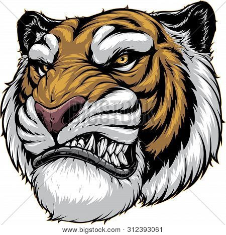 Vector Illustration, A Ferocious Tiger Growls, Shows A Grin, On A White Background.