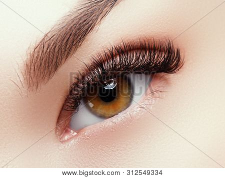 Beautiful Face Makeup. Long Natural Eyelashes. Perfect Make-up Closeup. Part Of Female Face. Glamour