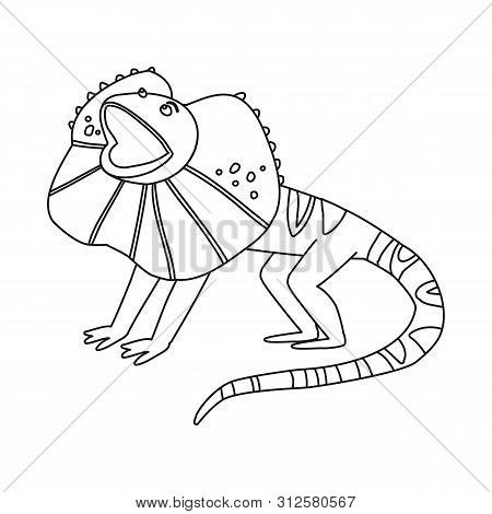 Isolated Object Of Lizard And Magical Sign. Collection Of Lizard And Bright Stock Symbol For Web.