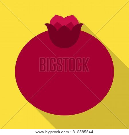 Isolated Object Of Pomegranate And Fruit Sign. Collection Of Pomegranate And Botanical Stock Symbol