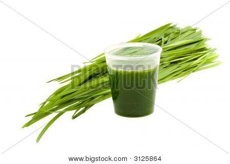 Bebida wheatgrass & Wheatgrass aislado sobre fondo blanco