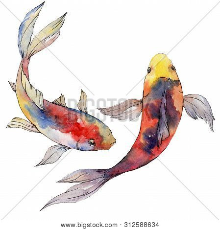 Aquatic Underwater Colorful Tropical Fish Set. Watercolor Background Set. Isolated Goldfish Illustra