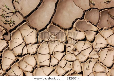 Cracked and dry mud in a rual landscape poster