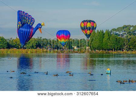 Hamilton, Nz - March 28, 2010: Hot Air Balloons Flying Above Lake Rotoroa (hamilton Lake Domain), In