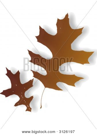 Dry Autumn Leaves Silhouette