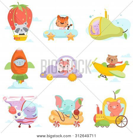 Cute Baby Animals In Transport Set, Raccoon, Tiger, Octopus, Koala Bear, Fox, Dog, Hippo Elephant, P