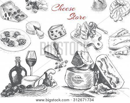 Vector Illustration Sketch - Cheese. Provolone, Cheddar, Edam, Parmigiano, Cheddar, Parmesan, Camemb