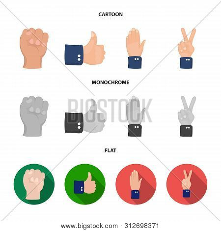 Isolated Object Of Animated And Thumb Symbol. Collection Of Animated And Gesture Stock Vector Illust