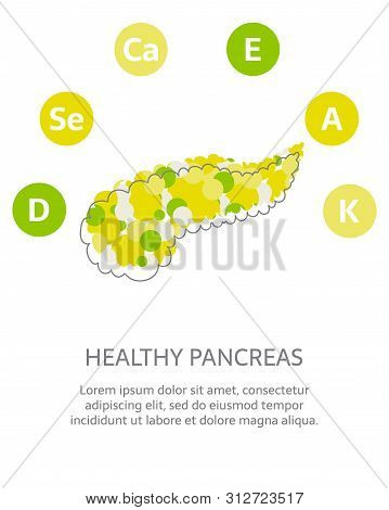 Minerals And Vitamins For Healthy Pancreas. Illustration Of Vitamins A, E, D, K, Ca, Se In A Rounded