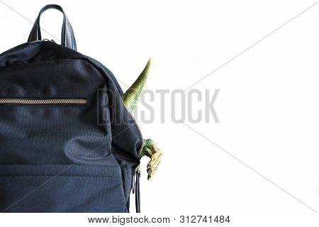 Black Backpack With Protruding Legs Of Toy Green Dinosaur