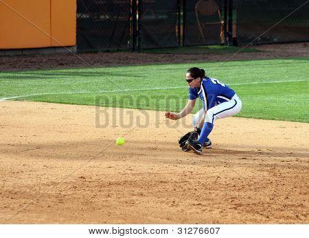 College Softball Player Fielding Groundball