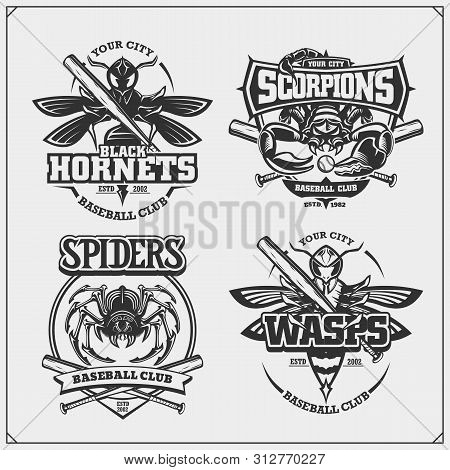 Baseball Badges, Labels And Design Elements. Sport Club Emblems With Scorpion, Wasp, Hornet And Spid
