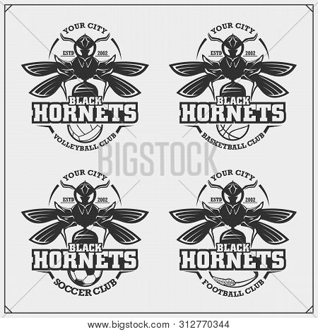 Volleyball, Basketball, Soccer And Football Logos And Labels. Sport Club Emblems With Hornet. Print