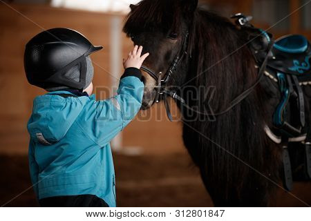 Closeup Of A Kid Stroking A Horse. The Boy Is Preparing To Learn Pony Riding In The Cold Season. Hip