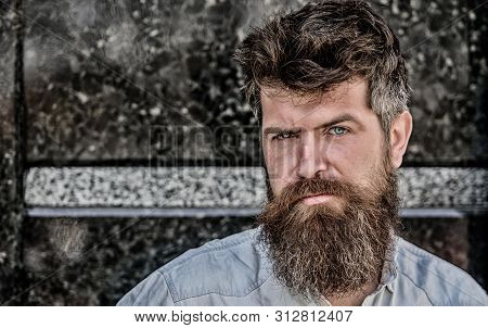 Confident Posture Of Handsome Man. Guy Masculine Appearance With Long Beard. Barber Concept. Beard G