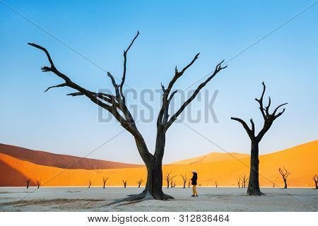 Young girl among dead camelthorn trees surrounded by red dunes in Deadvlei in Namibia