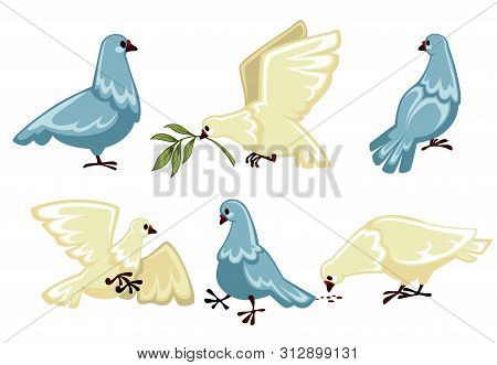 Pigeons Or Doves Isolated Wild Birds Flying And Sitting