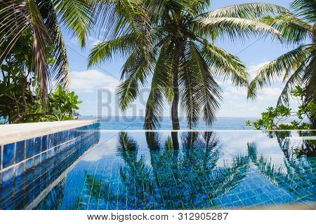 Coconut Palm Leaves Reflection In Infinity Pool