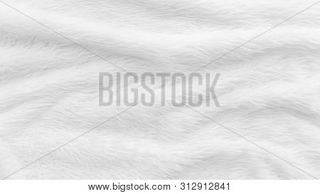 Fur Background With White Soft Fluffy Furry Texture Hair Cloth Of Sheepskin For Blanket And Carpet I