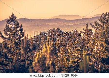 Sunrise In Mountain Landscape. Mountain In Sunrise. Sunrise In Mountain Forest Landscape. Forest And