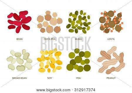 Legumes Beans Set In Flat Style Isolated