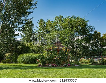 Recreation Area In A Park With Snug Cozy Gazebo Under Blossoming Sunflowers On Sunny Summer Day