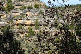 Native American Mountain Side Dwelling From Across The Canyon In Walnut Canyon National Monument In