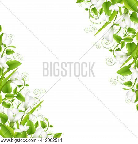 Border Snowdrops With Leaf, Isolated On White Background, Vector Illustration