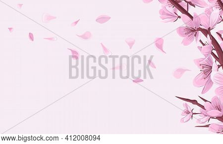 Cherry Blossom Branch With Fallen Petals Pink Vector Background. Spring Asian Background With Bloomi
