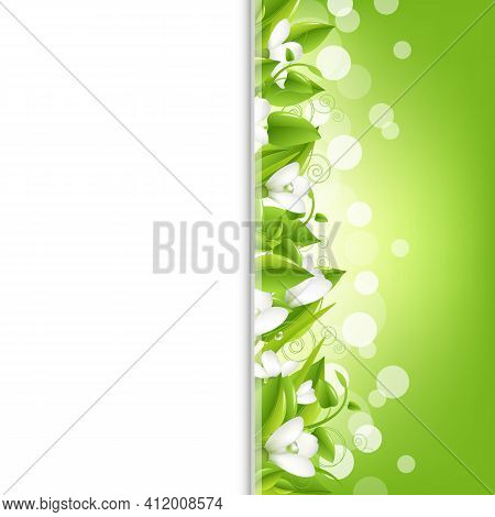 Border With Snowdrops And Leaf, Vector Illustration