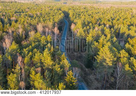 High Altitude View, Photo Taken With A Drone. A Flat, Vast Area Covered With A Pine Forest. It Is Ev