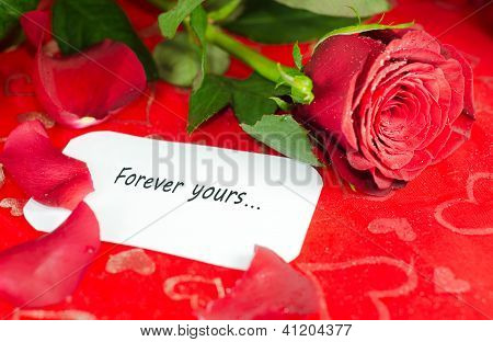 Rose with a white card.