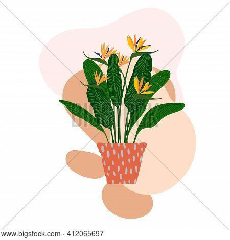 Indoor Plant In A Pot. Modern Spots For Text Delicate Colors.