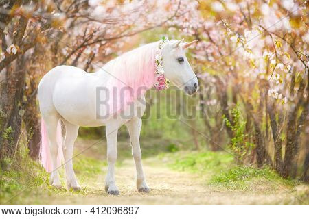 Unicorn. Photo Of A Snow-white Unicorn With A Pink And White Mane And Tail In A Spring Flowering Gar