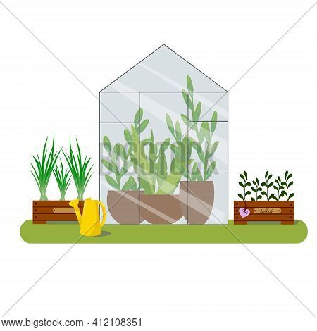 Garden Illustration With Potted Plants. Boxes With Green Onions And Herbs. Vector Illustration Of Th
