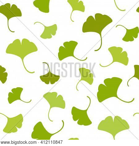 Seamless Floral Pattern Green Ginkgo Biloba Leaves. Floral Texture On White Background. Hand Drawn S
