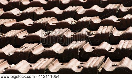 Marseilles Roof Tiles Dotted With Leaves Forming Pattern