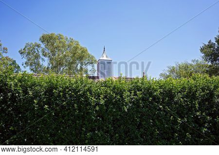 Cupola On Home With Tiled Roof And Hidden By A High Lush Thick Hedge Of Trees