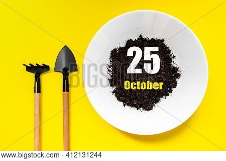 October 25th. Day 25 Of Month, Calendar Date. White Plate Of Soil With A Small Spatula And Rake On Y