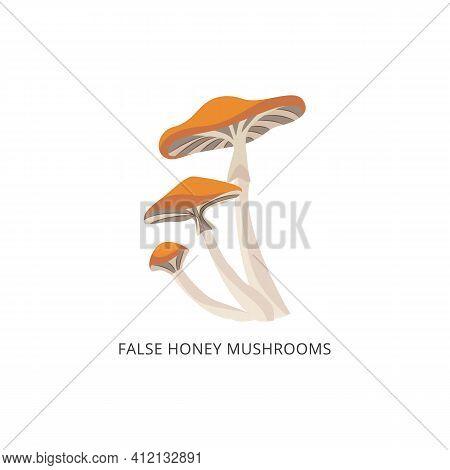 False Honey Agaric Mushroom - Autumn Forest Food Isolated
