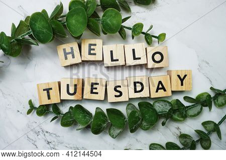 Hello Tuesday Alphabet Letter With Green Leave Flat Lay On Marble Background