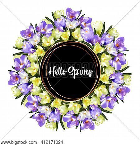 Abstract Hello Spring Background, Delicate Spring Crocus Flowers Collected In A Floral Bouquet Frame