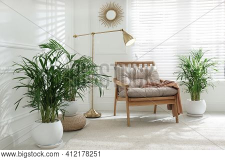 Stylish Room Interior With Exotic House Plants