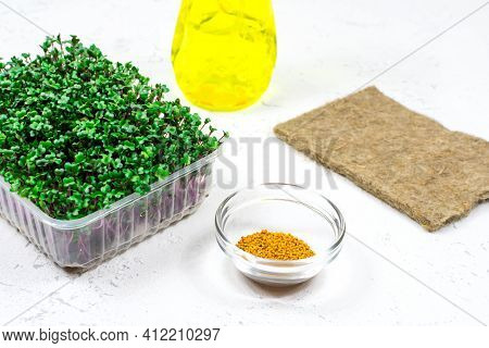 The Concept Of Proper Vegan Food. Mustard Microgreens Are Grown In A Tray. Mustard Seeds In A Glass