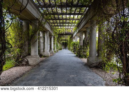 Wroclaw, Poland - May 13 2020: Long Tunnel With Pergola With Ivy And Bushes Around Over Big Fountain