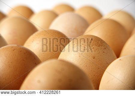 brown eggs closeup, shallow depth of field