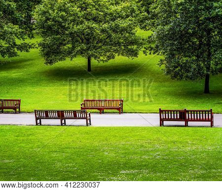 A beautiful green city park in the spring