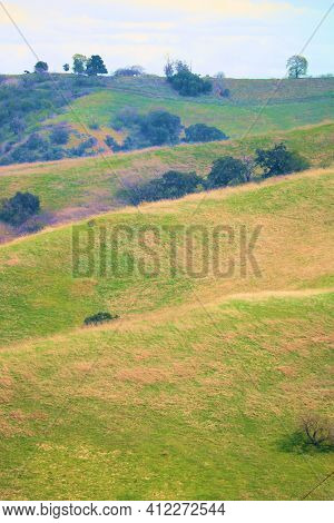 Rural Rolling Hills On Lush Grasslands Taken At A Windswept Prairie In The Puente Hills, Ca At Powde